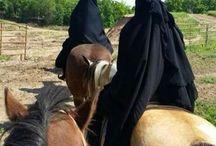Niqabie