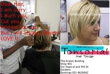 Tonsorial Hair Design / Hair salon Cape Town Hairstylist Taurique Behardien Award Winner