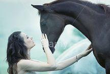 Horse / by Stacy De La Rosa