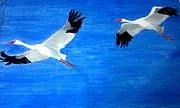 Art / Paintings -oil on canvas as well as water colours Please visit http://uma-swaminathan.artistwebsites.com/ for more details