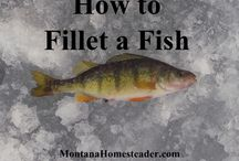 Cooking Tips / Learn how to: Pan-fry, Grill, Bake, Broil, Steam, Poach or Boil Seafood