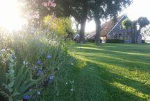 Open Tuinen 2015 / Foto's van de deelnemende tuinen van 2015 Groei en Bloei Afd. Coevorden