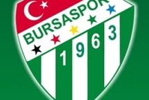 Şehr-i Müdafaa / 16 Mayıs 2010, Bursaspor Şampiyon...