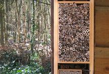 Bijenhotel/Vlinderkast