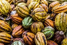 Discovering Pure Nacional / Recently, Sampsa Siekkinen, one of the co-founders of Goodio, traveled to Peru to meet the farmers behind one of the most rare cacao beans in the world --- Pure Nacional.