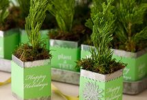 Green Gifts / Give green this year, using some of our environmentally friendly holiday gift ideas!