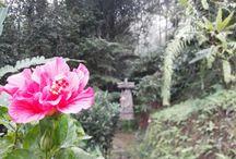 Pondok at Sanda Bali