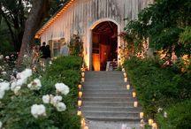 Wedding / by Jan Beauford