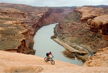 mountain biking / Dirt trails are beckoning to be rode / by William Graves