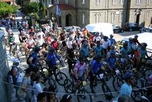 Mountain Bikes 2011
