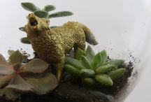 Terrariums / Just a few of our tiny creations.