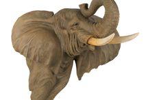 slon elephant