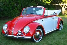 VW Beetle convertible & bugs
