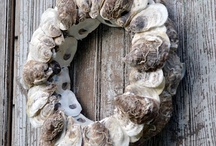 Wreath / by Alphabettasoupa B