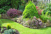Gardening ideas / by Deb Brueck