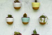 plantsarefriends