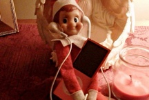 Elf on the Shelf / by Julie Wright