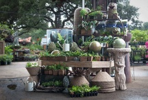 Displays to Inspire / These are displays from our garden center