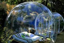 Cool Garden / My dream garden