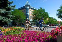 Fort Collins Community Scene