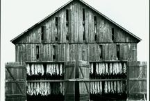 Old tobacco barns and more