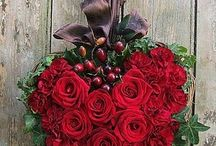 Christmas Flowers and Decor / Timeless classics to admire and inspire