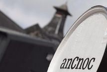 anCnoc Whisky / Whisky Please sells the finest single malt whiskies online at very low prices.