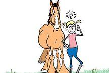 Hevoset ♥