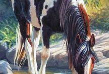 Arte Cavalo