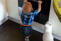 Katze als Babysitter