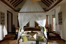 Island/Tropical Themed Bedroom / by April Sweets
