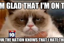 Grumpy  cat / He's so grumpy!