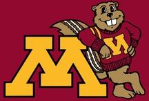 University of Minnesota / Pictures of the University of Minnesota