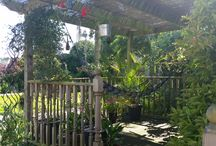 My garden / Just the most relaxing place to be