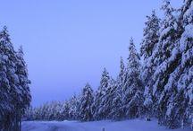 Työmatkalla Suomessa