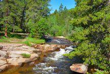 Go Take a Hike / by Linda Thorpe