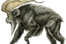 Terryl Whitlatch-dziwne kreatury