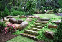 террасы лестницы