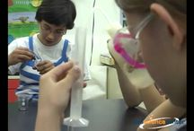 Field Trip Programs / by SEE Science Center