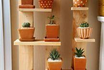 ideias plantas