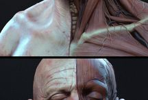 Anatomie, Pathology