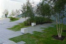 grass architecture