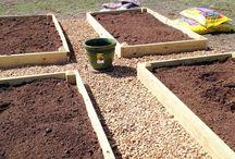 Gardening / Garten Inspiration, Gartentipps, DIY im Garten