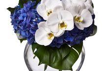 Florals - blue/white/black