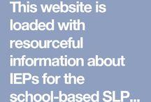 CD 491 - Individualized Education Program