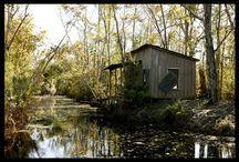 Blue Bayou / by mossdesign