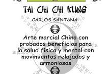 Todo Tai Chi Chuan y Chi Kung / Formas, Filosofía, Armas, Entrenamiento