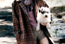 Denim, Flannel & Leather