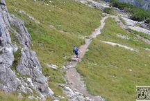 """Trailrunning / Es ist eine andere Art zu laufen, querfeldein über Stock und Stein. Überall dort laufen wo weit und breit kein Beton und Asphalt in der Nähe ist.   Bei Trailrunning geht es nicht darum die beste Zeit zu haben, es geht nicht darum der Schnellste zu sein. Traulrunning ist ja mehr eine """"Lebenseinstellung"""". Weg von Puls, Tempo, Trainingspläne. Mit der Natur verschmelzen."""