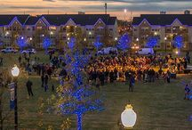 Holidays / A look at TU's campus during various holidays throughout the year! / by The University of Tulsa